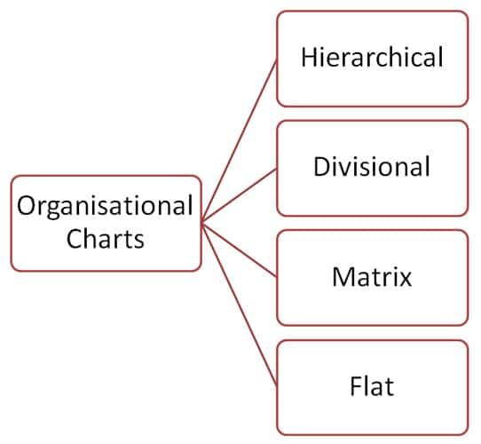 Organizational Chart Types