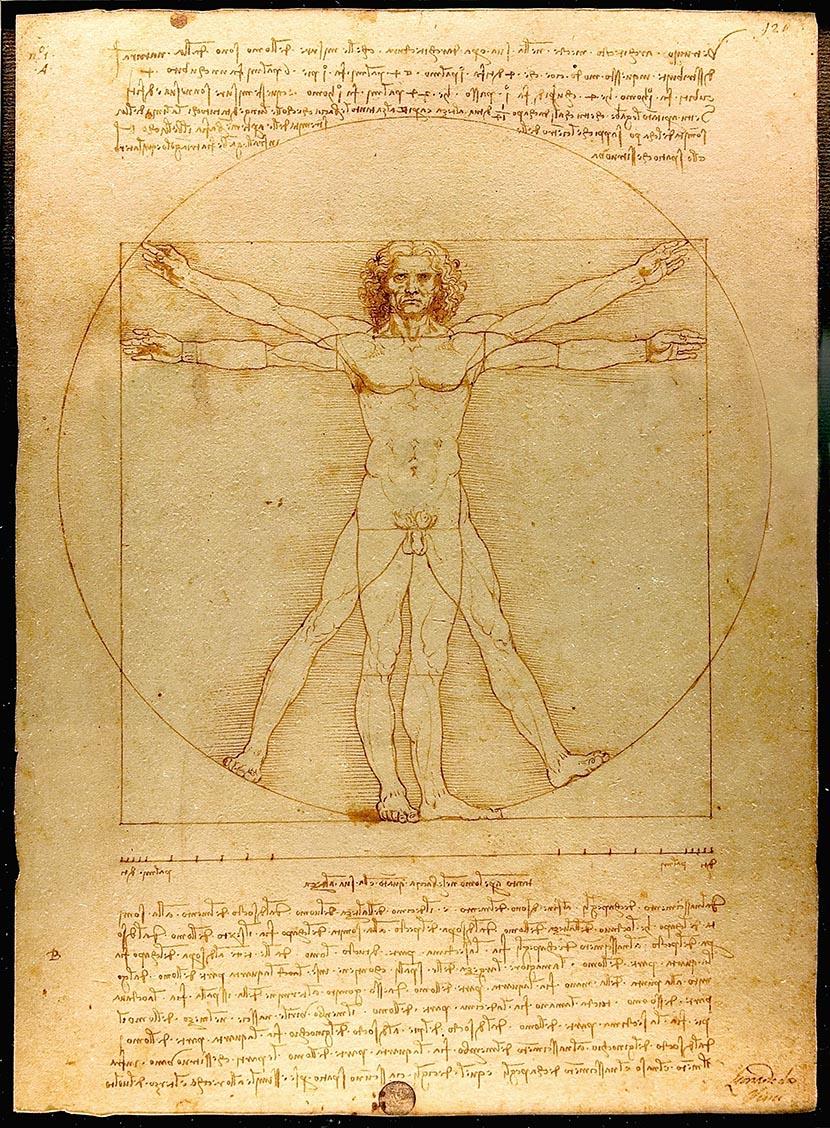 Vitruvian Man by Leonado Da Vinci
