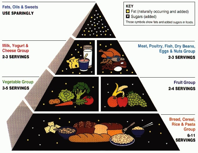 USDA's Food Pyramid