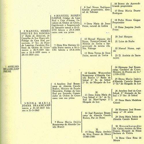 pedigree chart example