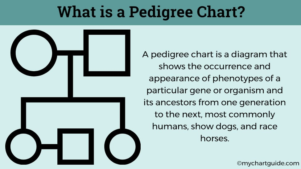 what is a pedigree chart
